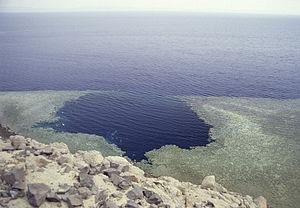 Обучение дайвингу на Красном море